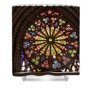 Stained Glass Details Shower Curtain