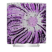 Stained Glass Flower With Purple Stripes Shower Curtain