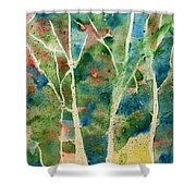 Stained Glass Forest In Spring Shower Curtain