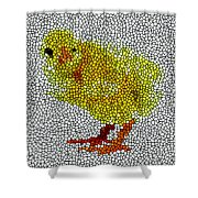 Stained Glass Little Chicken Shower Curtain