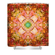 Stained Glass Mandala Shower Curtain