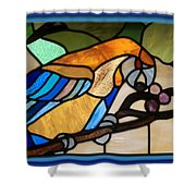 Stained Glass Parrot Window Shower Curtain