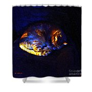 Stained Glass Snoozer Shower Curtain