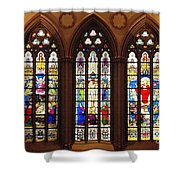 Stained Glass Windows At Saint Josephs Cathedral Buffalo New York Shower Curtain