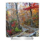 Staircase To Fall Shower Curtain