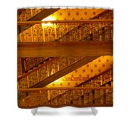 Stairs At The Brown Palace Shower Curtain