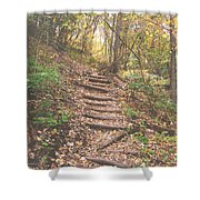 Stairs Into The Forest Shower Curtain