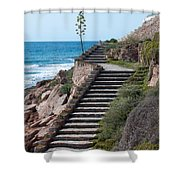 Stairway And Agave On Top. Shower Curtain