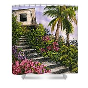 Stairway Garden Shower Curtain