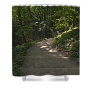 Stairway In Nature Shower Curtain