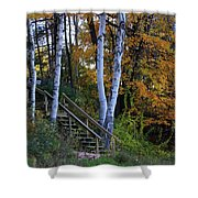 Stairway To Fall Shower Curtain