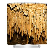 Stalactite Formations In Florida Shower Curtain