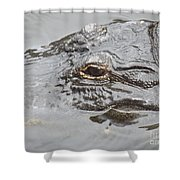 Stalker 2 Shower Curtain
