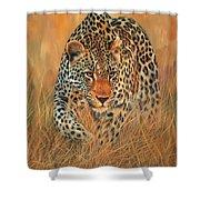 Stalking Leopard Shower Curtain