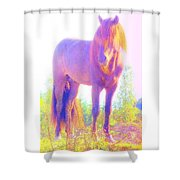 The Stallion Came To Me In A Dream Shower Curtain