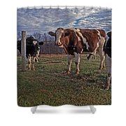 Stand Yer Ground Shower Curtain by Skip Willits