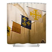 Standards Of The Knights Of The Templar Shower Curtain