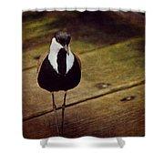 Standing Bird Shower Curtain