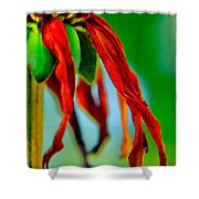 Standing Bright Shower Curtain