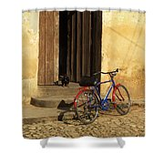 Standing Guard Shower Curtain