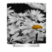 Standing Out From The Crowd 1 Shower Curtain