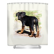 Standing Puppy Shower Curtain
