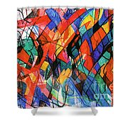 Talmud Torah 1 Shower Curtain