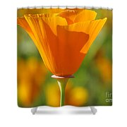 Standing Solo Shower Curtain