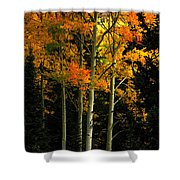 Standing Tall Shower Curtain