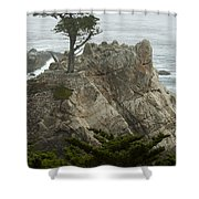 Standing Tall On The Rock Shower Curtain