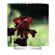 Standout Stand Tall Stand Proud Shower Curtain