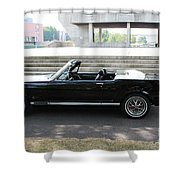 Stang Shower Curtain