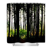 Stanley Park Triptych Right Shower Curtain