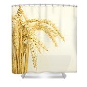 Staple Crop Shower Curtain