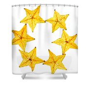 Star Fruit Slice Shower Curtain