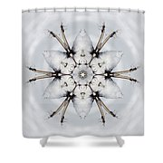 Star Of Fcp Shower Curtain
