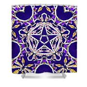Stardriver Shower Curtain