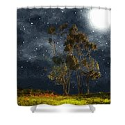 Starfield Shower Curtain