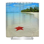 Starfish 5 Of Bottom Harbour Sound Shower Curtain