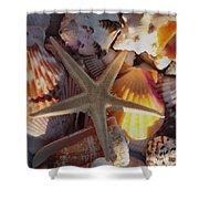 Starfish And Sun Rays Shower Curtain