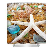 Starfish Art Prints Shells Agates Coastal Beach Shower Curtain by Baslee Troutman