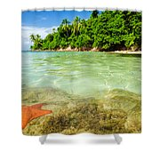 Starfish In Clear Water Shower Curtain