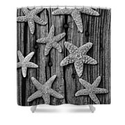 Starfish On Old Wood Black And White Shower Curtain