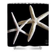 Starfish Tango Shower Curtain