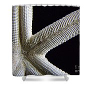 Starfish Underworld Shower Curtain