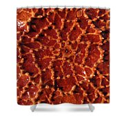 Starfish Upclose Abstract Shower Curtain