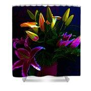 Stargazer Bouquet Shower Curtain