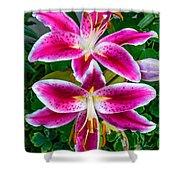 Stargazer Oriental Lilies Shower Curtain