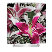 Stargazers Shower Curtain