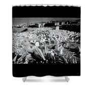 Surreal Cemetery Shower Curtain